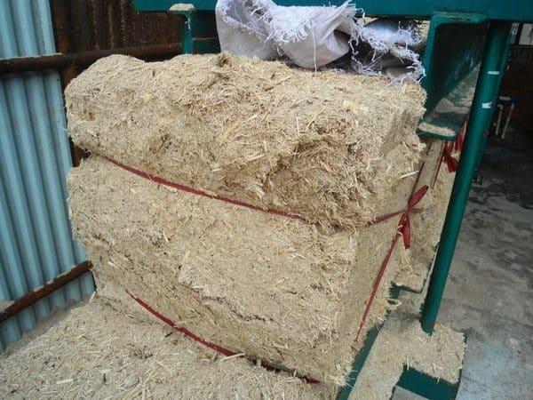 déchets de canne à sucre, bagasse de canne à sucre